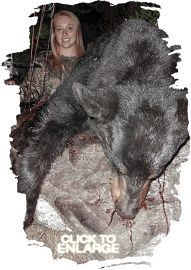 Trophy Bear Hunting Canada