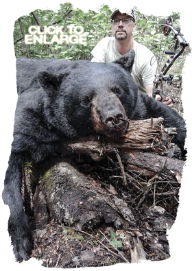 Black Bear hunting in Northwestern Ontario